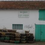 Oyster Farm, France