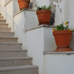 Flower pots, Penela, Portugal