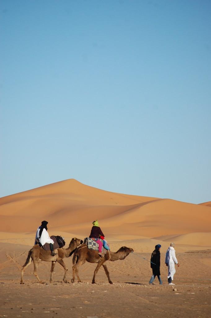 More folks off camel trekking