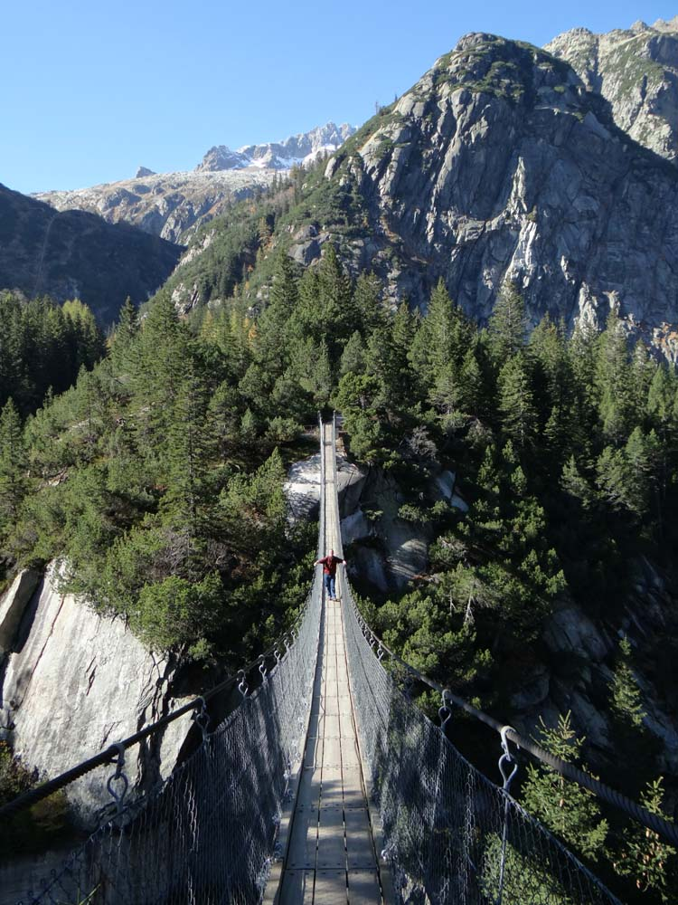 With no Gelmerseebahn for kicks, we had to make do with the adjacent, and free, rope bridge over the canyon.