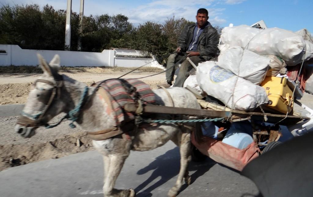 House moving Tunisian style?
