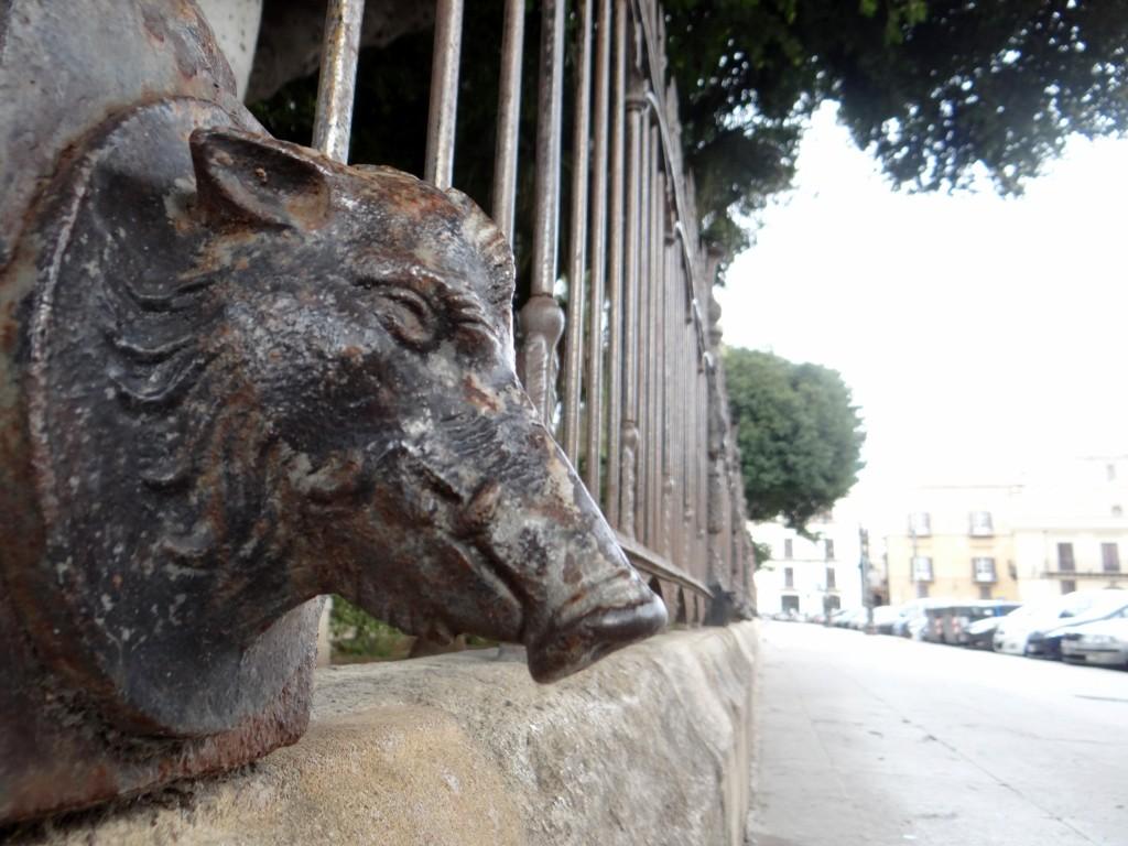 Wild Boar!!