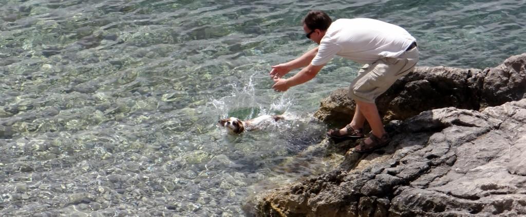 Charlie takes a dip