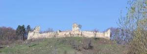 Sachiz Castle