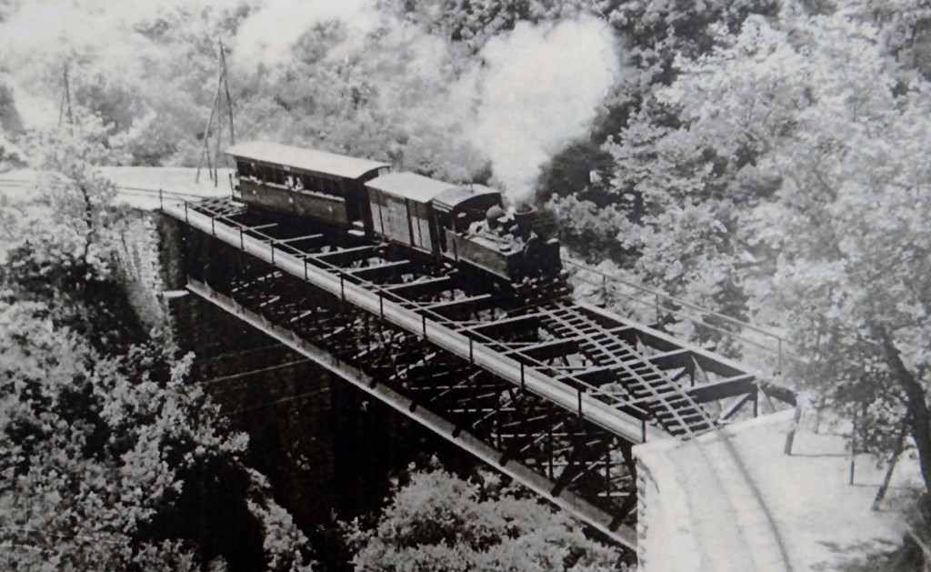 The steam train and the iron bridge