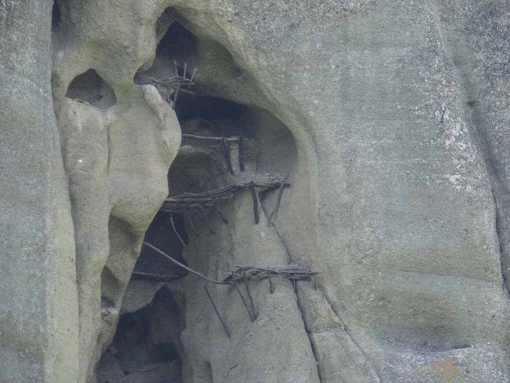 There are still signs of a basic life in among the high-up cracks in the rock.