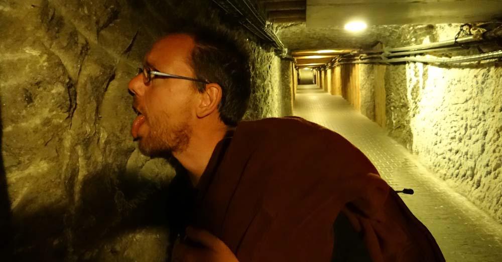 Jay tastes the wall in a quiet corridor