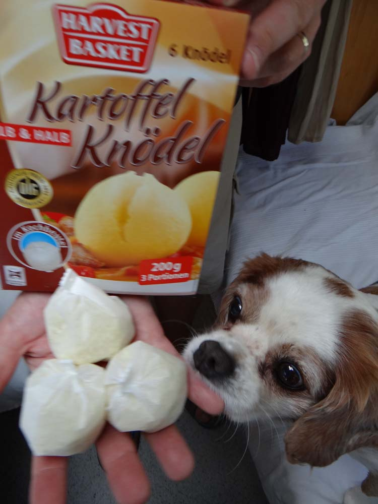 Charlie is interested in our lunch - Knodel, a bit like smash in a little bag. You boil it in a pan and get a potato dumpling!