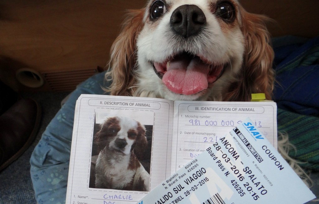 Charlie is ready for action with his passport and ferry ticket, look at the excitement on his little face!